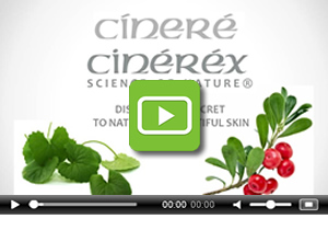 Cinere - Luxury Skin Care